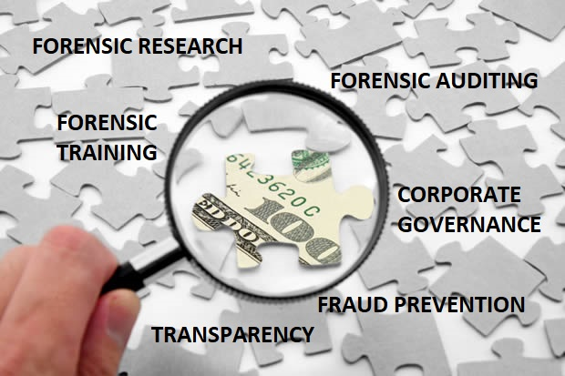 FORENSIC AUDITING COMPETENCE